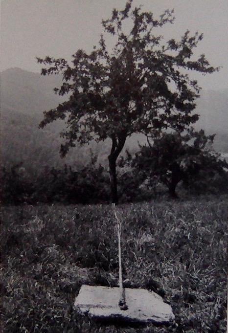 Giuseppe Penone 1968, pietra, corda, albero, sole: pietra, corda, albero, pioggia (resting)